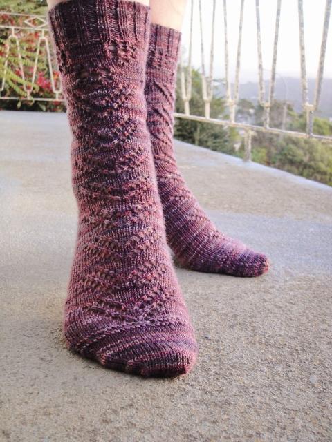 Aster socks